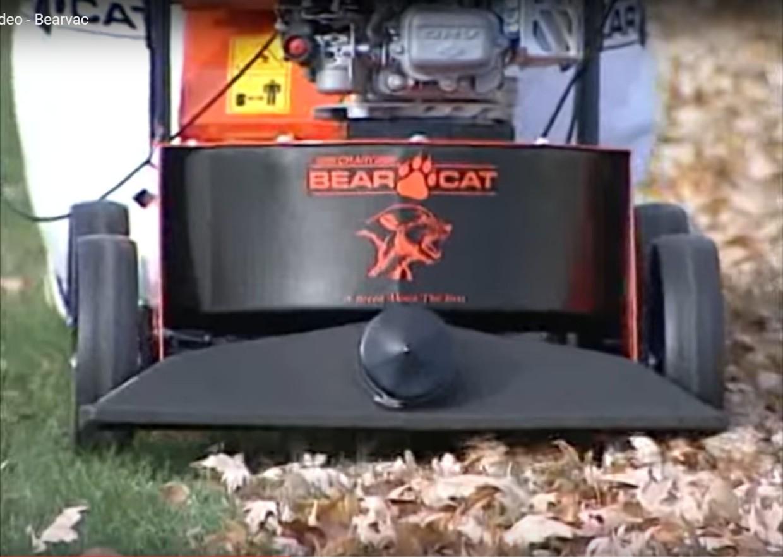 Bearcat 1.jpg